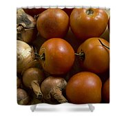 Fresh Tomatos And Onions From A Garden Shower Curtain