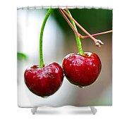 Fresh Wet Cherries Shower Curtain