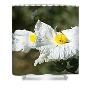 Fried Egg Flowers Shower Curtain