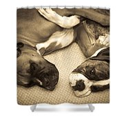Friendship Embrace Shower Curtain