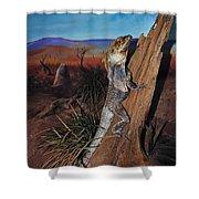 Frill-necked Lizard Shower Curtain