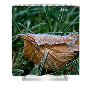 Fringed In Frost Shower Curtain