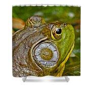 Frog Eye Shower Curtain