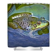 Frog Resting On A Lily Pad Shower Curtain
