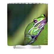 Froger Shower Curtain