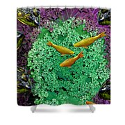 Froggery 2 With Koi Shower Curtain