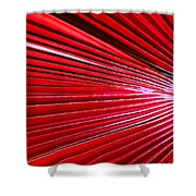 Frond Of Red Shower Curtain