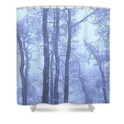 Frost Covered Trees In Fog, Alaska Shower Curtain