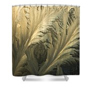 Frost Crystal Patterns On Glass, Ross Shower Curtain