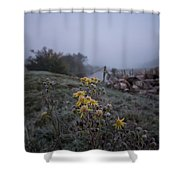 Frosted Flowers Shower Curtain