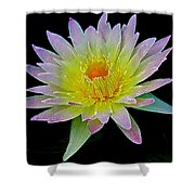 Frosted Lily Shower Curtain