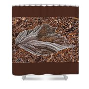 Frosted Raspberry Leaf Shower Curtain