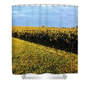 Frosted Soybeans Shower Curtain