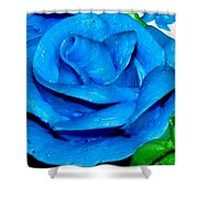 Frosting Rose Shower Curtain