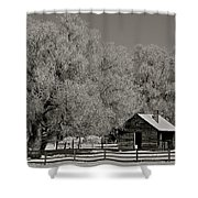 Frosty Day Shower Curtain