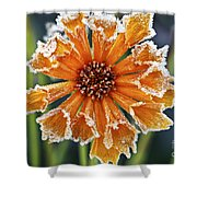 Frosty Flower Shower Curtain by Elena Elisseeva