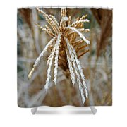Frosty Fountain Grass Shower Curtain