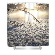 Frosty Ice At Sunrise Shower Curtain