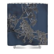 Frosty Weeds Shower Curtain