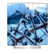 Frozen II Shower Curtain