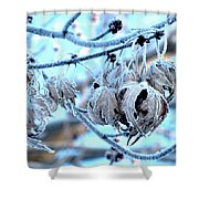 Frozen IIi Shower Curtain