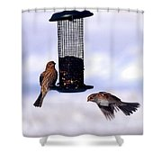 Frozen In Flight 1 Shower Curtain