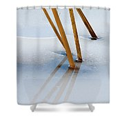 Frozen Lotus Shower Curtain