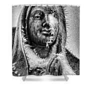 Frozen Mother Shower Curtain