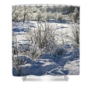 Frozen Winter Landscape Shower Curtain
