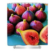 Fruit - Jersey Figs - Harvest Shower Curtain