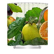 Fruit Day Shower Curtain