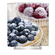Fruit Tarts Shower Curtain