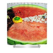 Fruits Depicting Kepler's Law Shower Curtain