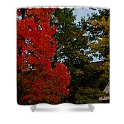 Full Moon Between The Trees Shower Curtain