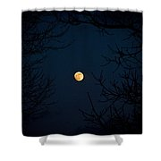 Full Moon On A Winter's Night Shower Curtain
