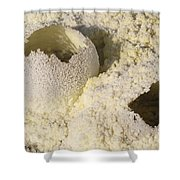 Fumarole Deposits In The Dallol Shower Curtain