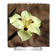 Funny Face Flower Shower Curtain