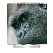 Funny Gorilla Shower Curtain