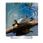 Funny Turtle Catching Some Rays Shower Curtain