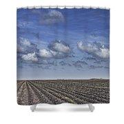 Furrows In A Texas Field Shower Curtain