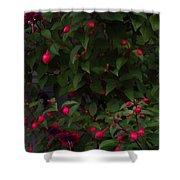Fuschia Tree Shower Curtain