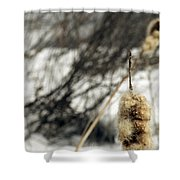 Fuzzy Shower Curtain