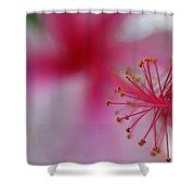 Fuzzy Hibiscus Shower Curtain