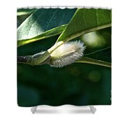 Fuzzy Magnolia Shower Curtain