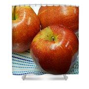 Gala Apples Shower Curtain