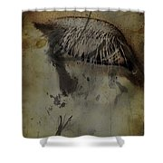 Galloping Glares  Shower Curtain
