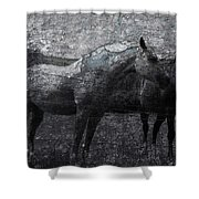 Galloping Stones Shower Curtain
