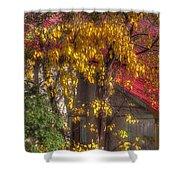 Garage And Leaves Shower Curtain
