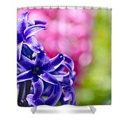Garden Color Splash Shower Curtain