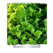 Garden Fresh Salad Bowl Lettuce Shower Curtain